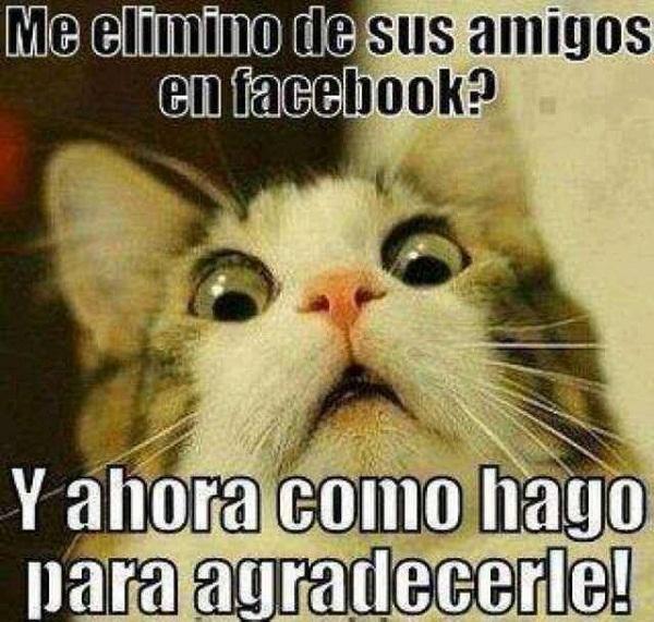 fotos, imágenes, fotos e imágenes, graciosas facebook, fotos graciosas facebook