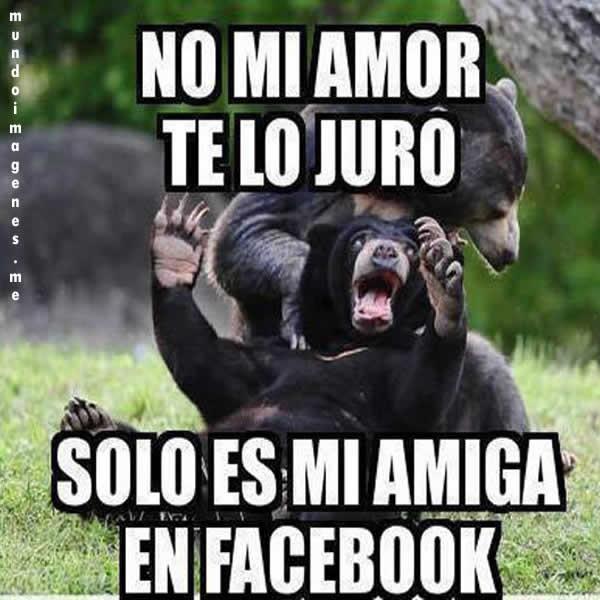 Fotos graciosas de amor para el facebook