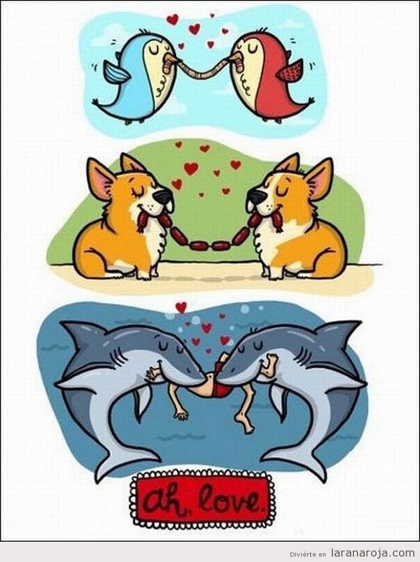 Imágenes graciosas amor