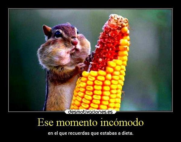 Imágenes graciosas comiendo
