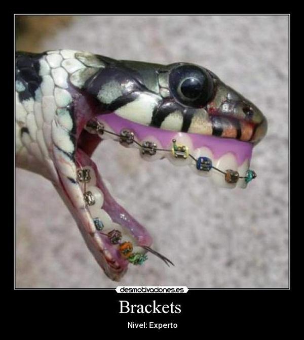 Imágenes graciosas con brackets